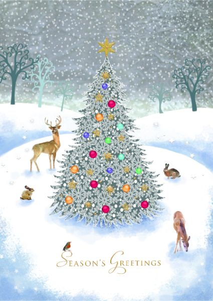 Wildlife Christmas Cards.Woodland Wildlife Winter Scene Cards
